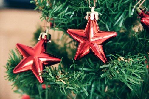 Weihnachtsstern am Tannenbaum